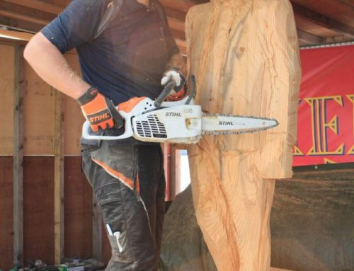Chainsaw sculpting supremo to preside over the first ever Wales Pumpkin Carving Championships